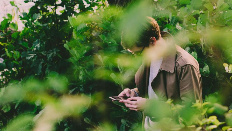 man hidden by green leaves looks at his phone face hidden